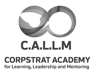 CALLM website development